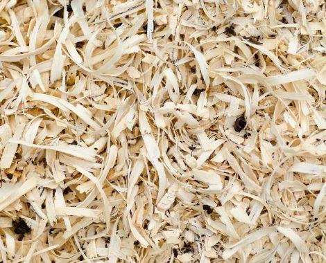 wood-2309314_960_720